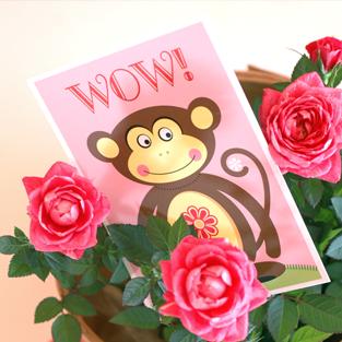 Postkarte Affe